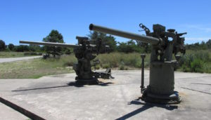 Fort Miles Two Guns