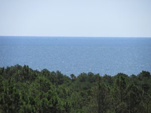 Ocean from Henlopen Tower