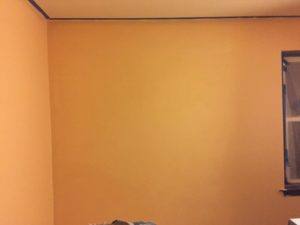 Home Renovation Part Three - Paint Ceiling and Walls