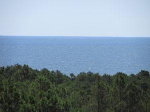 Ocean from Henlopen Tower
