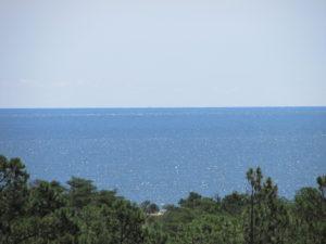 Ocean from Henlopen Tower2